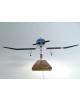 Maquette avion Robin DR400 civil en bois